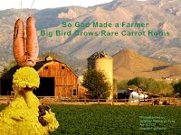 So God Made a Farmer — Big Bird Grows Rare Carrot Horns (Volatility Research) 1000w