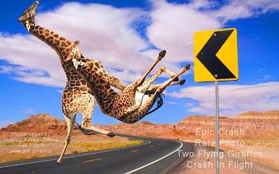 Epic Crash rare Photo Two Flying Giraffes Crash In Flight (Volatility Research) 1000w