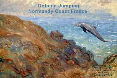 Dolphin Jumping Normandy Coast France (Volatility Research) 1000w