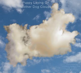 Puppy Laying On Mother Dog Clouds (Volatility Research) 1000w