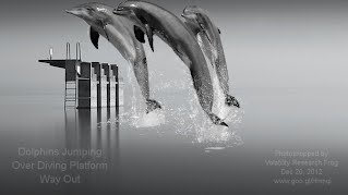 Dolphins Jumping Over Diving Platform Way Out