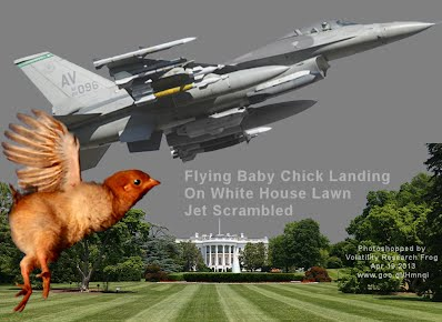 ALERT - Flying Baby Chick Landing On White House Lawn - Jet Scrambled (Volatility Research) 1000w