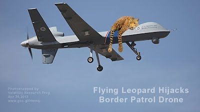 Flying Leopard Hijacks Border Patrol Drone (Volatility Research) 1000w
