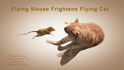 Flying Mouse Frightens Flying Cat (Volatility Research) 1000w