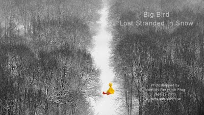Big Bird Lost Stranded In Snow (Volatility Research) 1000w