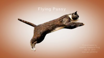 Flying Pussy (Volatility Research) 1000w