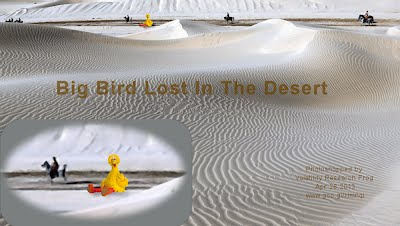 Big Bird Lost In The Desert (Volatility Research) 1000w