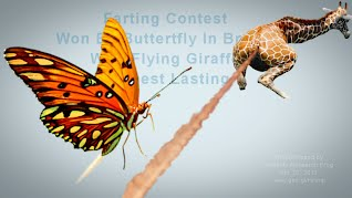 FARTING Contest #3 Won By Butterfly In Brazil With Flying Giraffe - Longest Lasting (Volatility Research) 1000w3