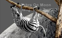 Zebra On Moon Hanging In Tree (Volatility Research) 1000w