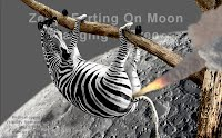 Zebra FARTING on Moon Hanging In Tree (Volatility Research) 1000w