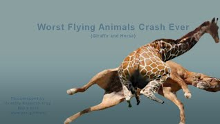 Worst Flying Animals Crash Ever - Giraffe and Horse (Volatility Research)