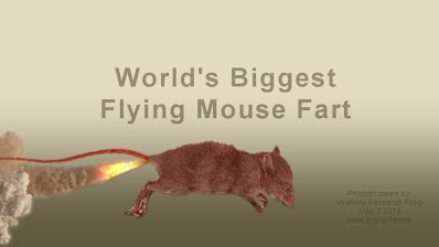 Worlds Biggest Flying Mouse Fart (Volatility Research) 1000w