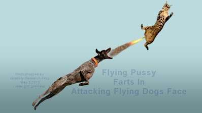 Flying Pussy #2 Farts In Attacking Flying Dogs Face (Volatility Research) 1000w2