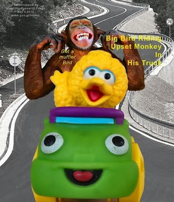 Big Bird Riding Upset Monkey In His Truck (Volatility Research) 1000w