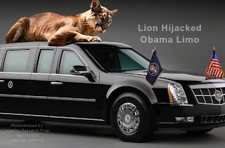 Lion Hijacked Obama Limo (Volatility Research) 1000w