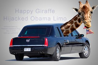 Happy Giraffe Hijacked Obama Limo (Volatility Research) 1000w