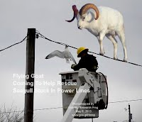 Flying Goat Coming To Help Rescue Seagull Stuck In Power Lines (Volatility Research) 1000w2