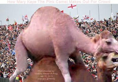 How Mary Kaye The Pink Camel Makes Out For Crowd (Volatility Research) 1000w