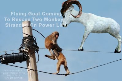 "Flying Goat Coming To Rescue Two Monkeys Stranded On Power Line (Volatility Research) 1000w2 http://youtu.be/dNrs_UUejLE Music ""Battle Hymn Of The Republic"" by Eddie Adcock"