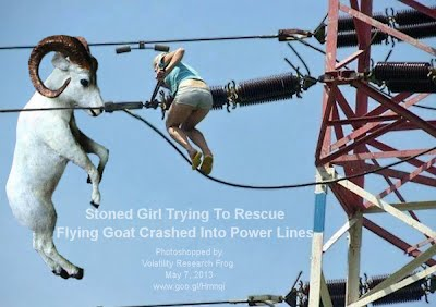 Stoned Girl Trying To Rescue Flying Goat Crashed Into Power Lines 1000w