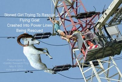 Stoned Girl Being Rescued Trying To Rescue Flying Goat Crashed Into Power Lines 1000w2