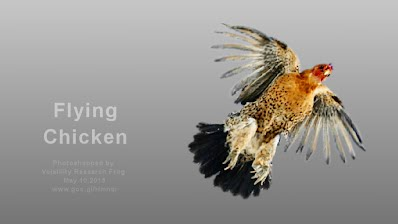 Flying Chicken 20130511 (Volatility Research) 1000w