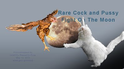 Rare Cock and Pussy Fight On The Moon (Volatility Research) 1000w