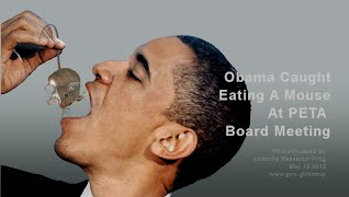 Obama Caught Eating A Mouse At PETA Board Meeting (Volatility Research) 1000w