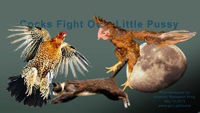 Cocks Fight Over Little Pussy (Volatility Research) 1000w