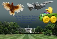 ALERT - Big Bird Coming To Rescue Flying Chicken Landing On White House Lawn Jet Scrambled (Volatility Research) 1000w