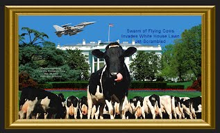 Swarm of Flying Cows Invades White House Lawn Jet Scrambled (Volatility Research) 1000h