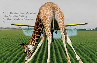Crop Duster Just Crashed Into Giraffe Eating So God Made a Farmers Crop (Volatility Research) 1000h