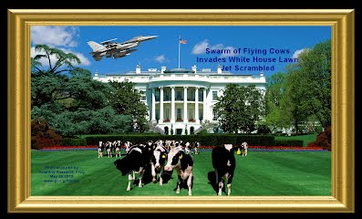 Swarm of Flying Cows Invades White House Lawn Jet Scrambled (Volatility Research) 1000h2