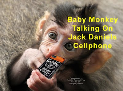 Baby Monkey Talking On Jack Daniels Cellphone (Volatility Research) 1000h2