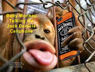 Baby Monkey Talking On Jack Daniels Cellphone (Volatility Research) 1