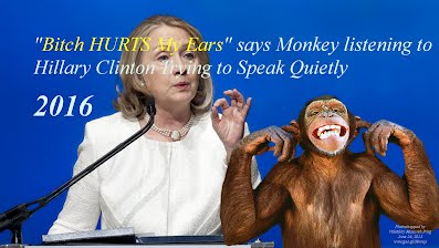 Bitch HURTS My Ears says Monkey Listening to Hillary Clinton Speaking (Volatility Research) 1000h75