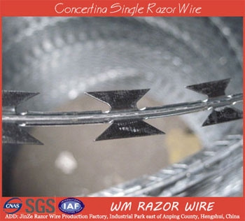 Concertina Single Razor Wire Materials include stainless steel wire and galvanized iron wire