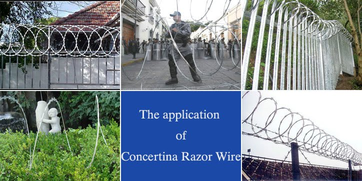 Concertina Single Razor Wire application